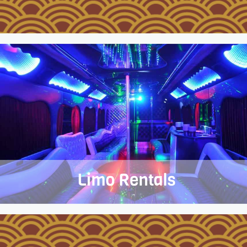 toronto party bus rentals